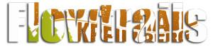 logo-flowtrail