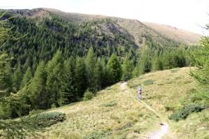 klein_trail heckansicht 2
