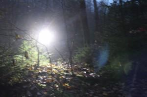 licht trail