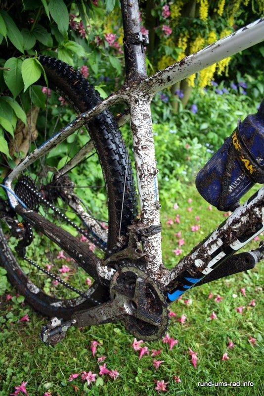 Fahrrad Pflege Wartung