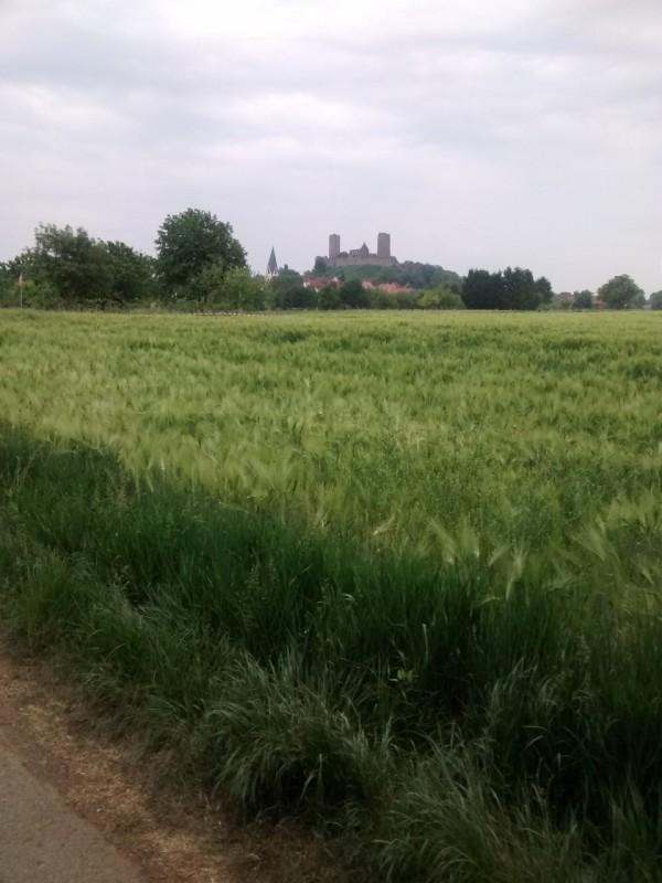 RTF Oppershofen: Die Münzenburg