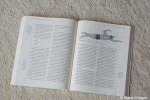 Trainingsbibel für Triathleten: Schwimmen